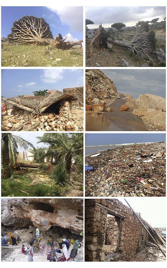 La devastación en Yemen